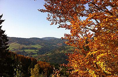 Herbstfarben im Südschwarzwald