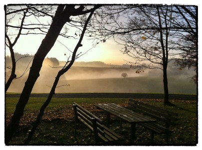 Herbstbilder an der Nebelgrenze