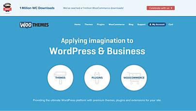 WooThemes und WooCommerce