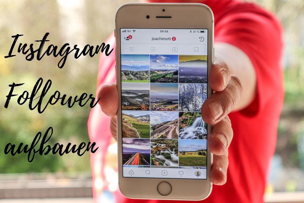 Instagram Follower aufbauen: ein kompaktes 4-Wochen-Programm.