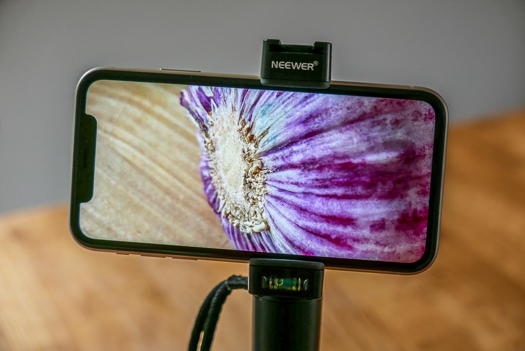 Nah dran: Die iPhone Kamera erlaubt tolle Nahaufnahmen.