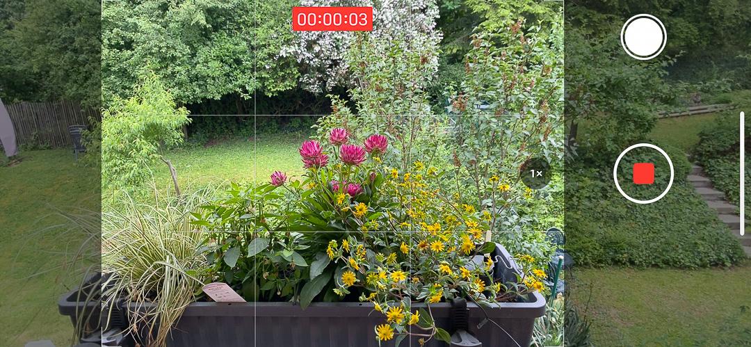 Fließender Wechsel vom Einzelfoto zum Video oder zu Serienbildern.