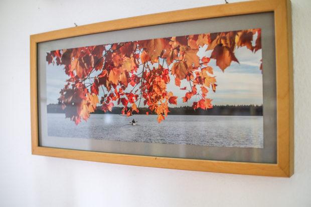 Hingucker im Wohnzimmer statt digitales Datengrab: Analoge Fotografie ist eine gute Alternative.