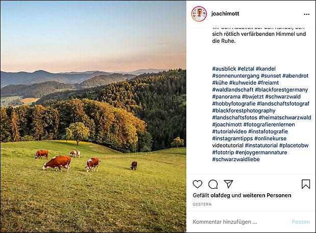 Hashtags halte ich aus den Instagram-Bildtexten raus. Sie stehen abgesetzt deutlich unter dem Text. Oder in einem ersten Kommentar.