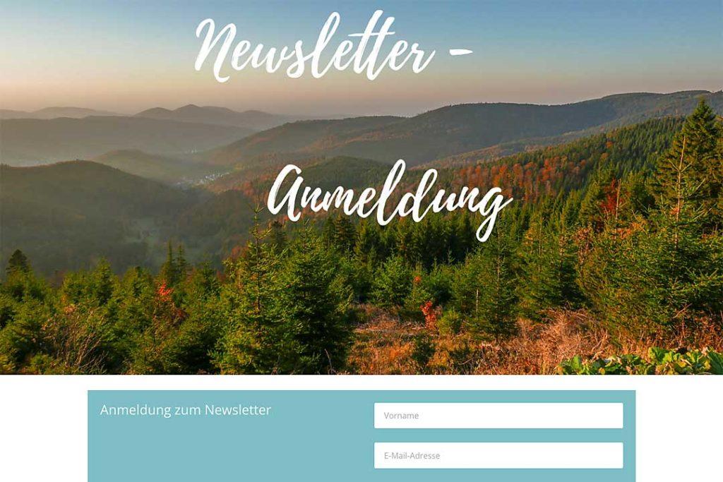 Die Newsletter-Anmeldung ist oft ein zentrales Ziel für Websites.